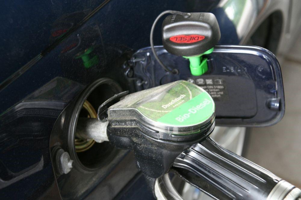 Депутаты ГД рассказали о будущем цен на бензин